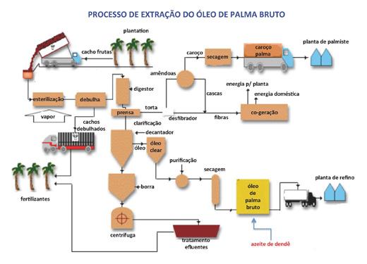 Processo Extracao Palma Port 520