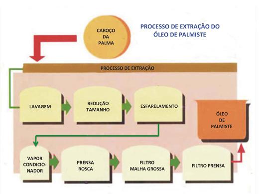 Processo Extracao Palmiste Port 520
